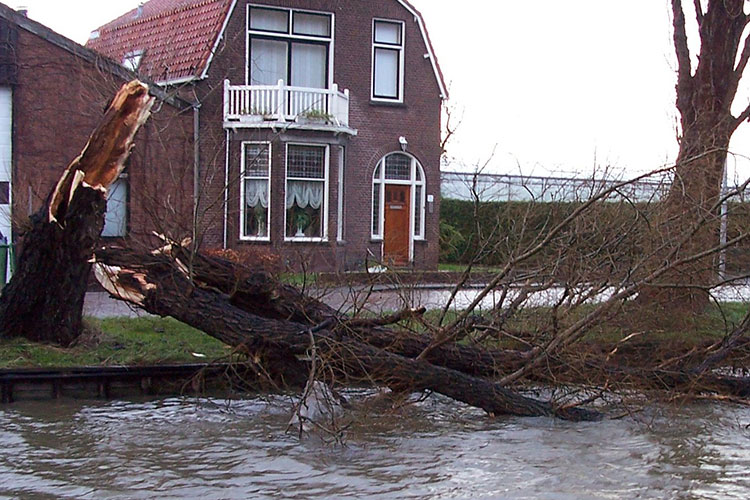 Eerste hulp bij stormschade